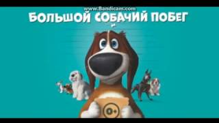 Большой собачий побег