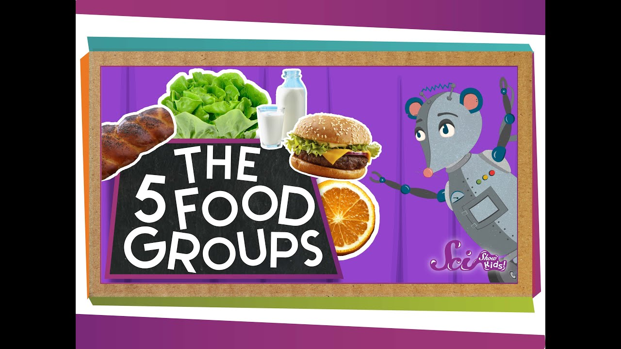 small resolution of The 5 Fabulous Food Groups - YouTube