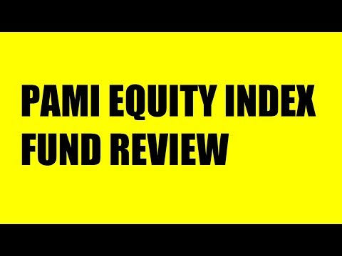PAMI EQUITY INDEX FUND REVIEW