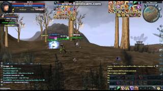 World-War Rohan PvP  Guild Eincarnation