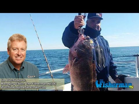 April 13 2017 new jersey delaware bay fishing report with for De fishing report