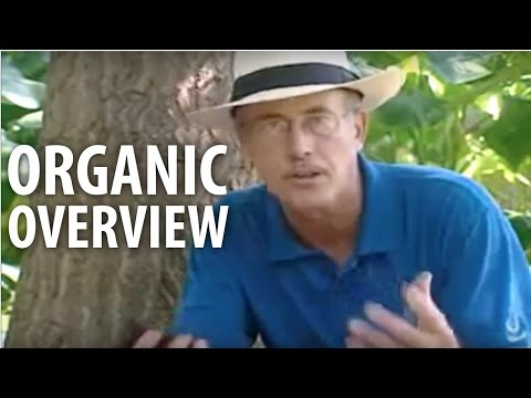 Organic Overview - The Dirt Doctor