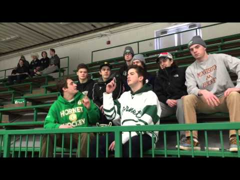 Edina Hockey Cheer Video 2015