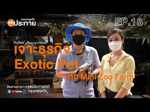 เจาะธุรกิจ Exotic Pet กับ Mini Zoo Farm l จุดประกาย EP.18
