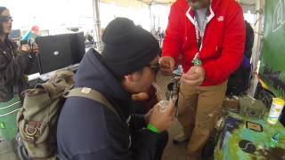 Cannabis Cup 2015 Denver Colorado