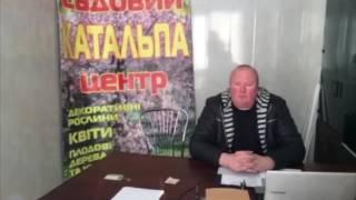 7312 Садовий центр Катальпа,Сокуренко Андрій Дмитрович(, 2017-02-21T21:07:21.000Z)