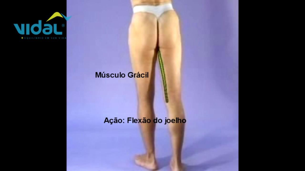 9 dolor detras de la rodilla April Fools