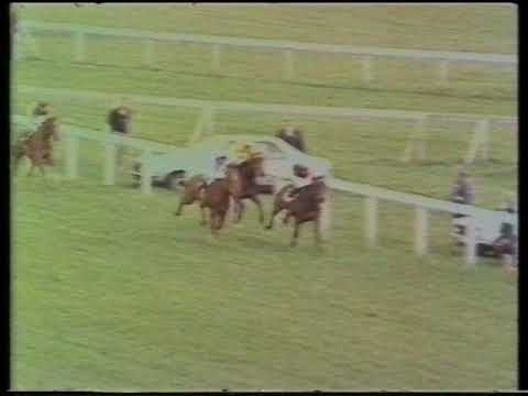1982 Highland Spring Derby Trial Stakes