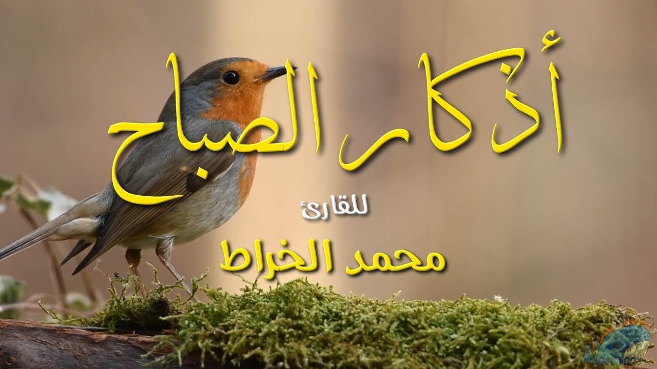 اذكار الصباح للمقرئ محمد الخراط azkar alsabah - نون تون