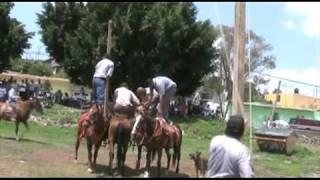 Cahuageo - Fiesta de Santiago Apostol 2009 parte 2