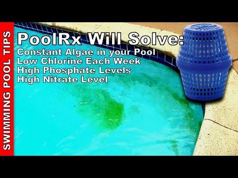 Swimming Pool Tips Reviews Amp How To Mrdgvb1 Youtube
