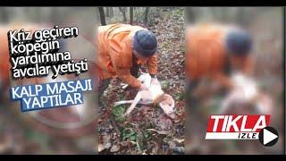 Kriz geçiren köpeğin yardımına avcılar yetişti