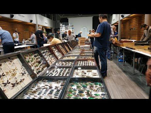 13 выставка ярмарка насекомых, 13 Международная Выставка Ярмарка насекомых  Москва