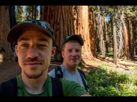 California Trip-Dispersed Camping in a National Forest-Giant Sequoia!