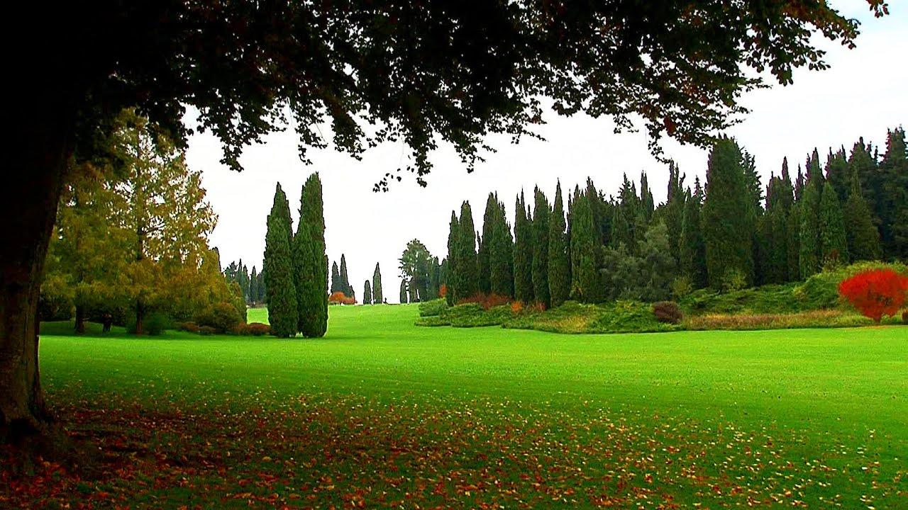 Stupefacente Foto Giardini Raccolta Di Giardino Decorativo