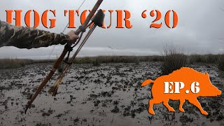 BOARS in the LONG GRASS! - Recurve Bow Hunting Public Land Hog Tour Ep. 6