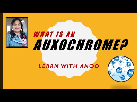 What is an AUXOCHROME?