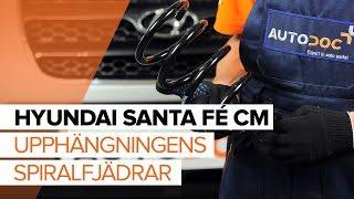 Hur byter man Glödlampa Skyltbelysning HYUNDAI SANTA FÉ II (CM) - online gratis video