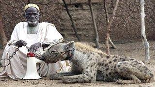 5 खतरनाक जानवर जिन्हें लोग घर में पालते है | 5 Scariest Pets People Actually Own