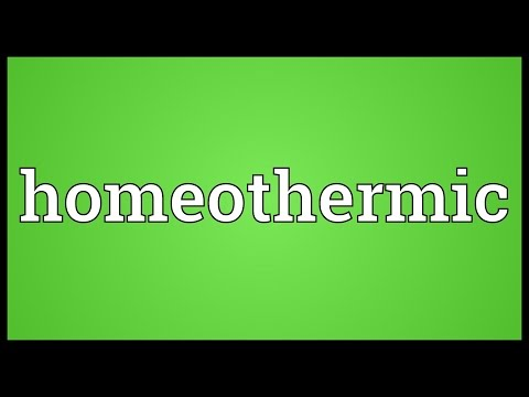 Homeothermic Meaning
