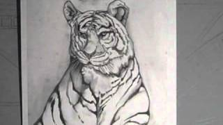 Mizzou Tigers 001