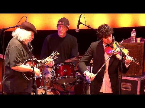 The Dave Grisman Quintet