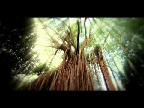 Die Schöpfung ( Der Film 2010 )