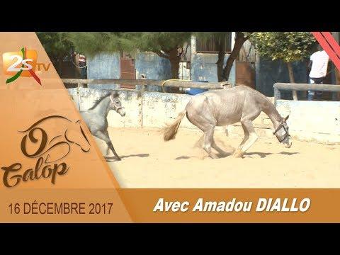 O GALOP DU 16 DÉCEMBRE 2017 AVEC AMADOU DIALLO