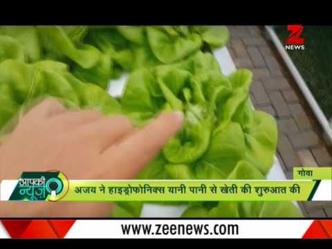 Aapki News : Meet engineer who grows crops in water without