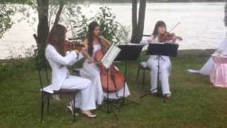 Свадьба, Серебряный бор, струнное трио DOLLS