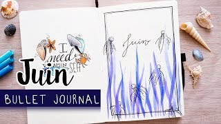 PLAN WITH ME | Bullet Journal JUIN