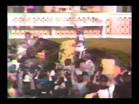1981 Preakness Stakes - Pleasant Colony : ABC Broadcast