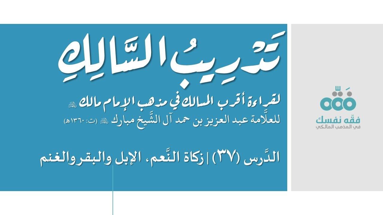 37 زكاة النعم الإبل والبقر والغنم تدريب السالك إلى قراءة أقرب المسالك نايف آل الشيخ مبارك Youtube