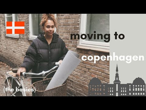 moving to copenhagen? (the basics) 🇩🇰