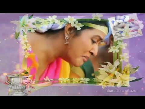 Saravanan Meenakshi (Kannukula Nikira En Kadaliye Song)