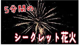 【花火】5分間のシークレット花火🎆天神祭りの代わりにシークレット花火が大川に打上がったので見に行ってきました💕