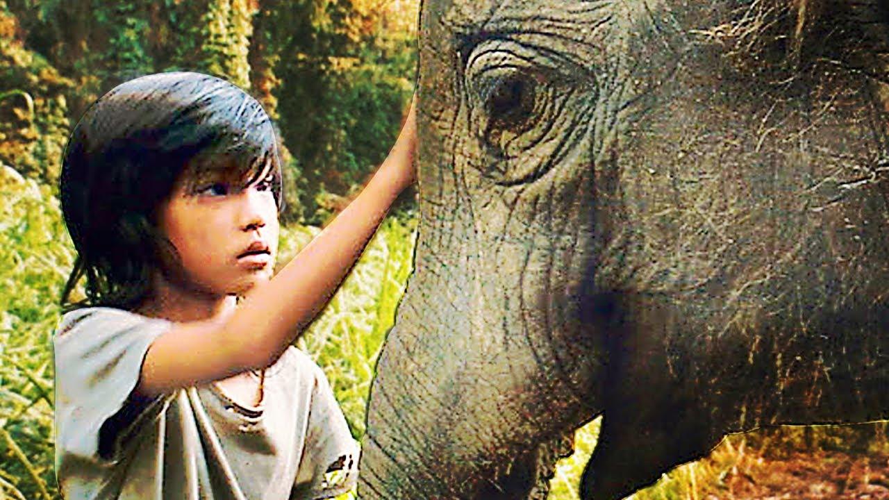 Mon Ami Lucky l'Éléphant Film HD en Français