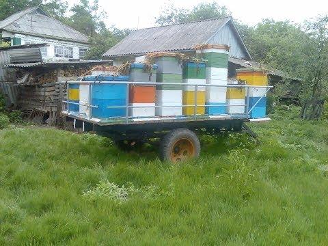 БИЗ, прицеп пчеловодческий в ульяновске всей