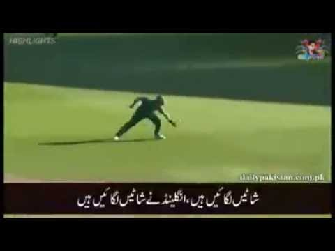Pakistani Cricket Team New Funny Song 2016