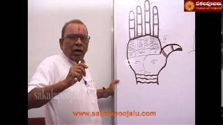 PALMISTRY PART   7 IN HINDI
