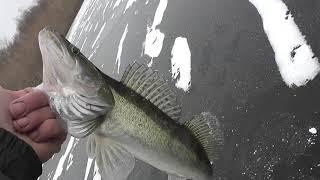 18 Зимняя рыбалка на р Ахтуба 5 6 день февраль 2020г