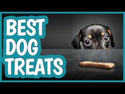 best-dog-treat-in-2019-|-top-10-dog-treats