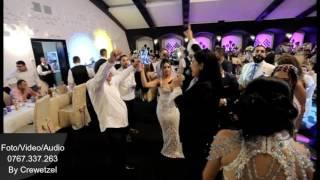 RALUCA DRAGOI - LACRIMILE IMI APRIND FATA 2016 HORA (NUNTA BEBI & ANDREEA) IN PREMIERA ...