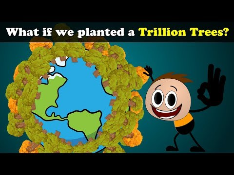 What if we planted a Trillion Trees? | #aumsum