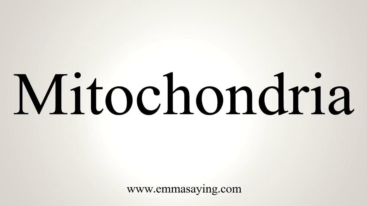 How To Pronounce Mitochondria