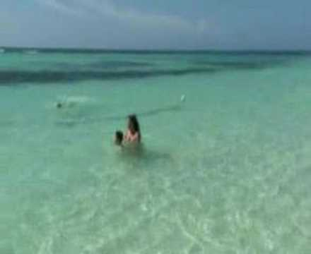 Saona Island  -  Parque Nacional del Este  -  Private Beach and Public Beach
