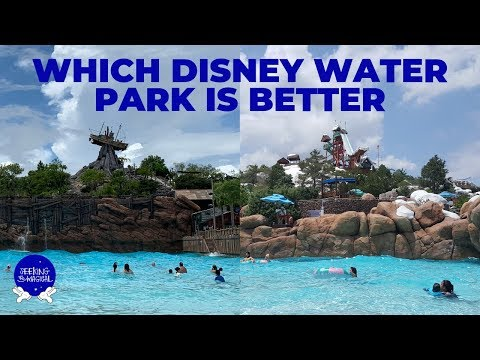 Which Disney Water Park is Better? Blizzard Beach vs. Typhoon Lagoon: The Best Disney Water Park