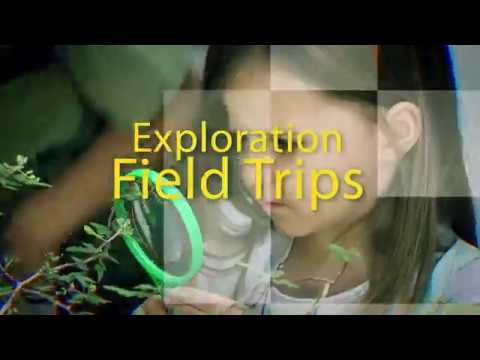 Outdoor Learning with Environmental Exploration Field Trips