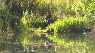 Черное озеро. Большая Соснова.Рыбалка 2015 лето.