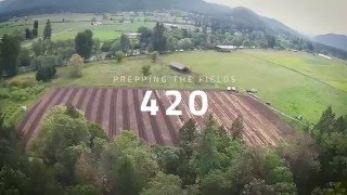 OM Farms Oregon - Prepping the Fields 420